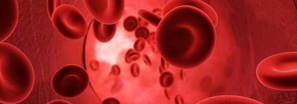 Detalhes Importantes da Dieta do Sangue