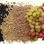 Fibras solúveis e insolúveis: entenda a diferença e saiba quais são as contribuições da inclusão destes componentes alimentares em nosso dia a dia.